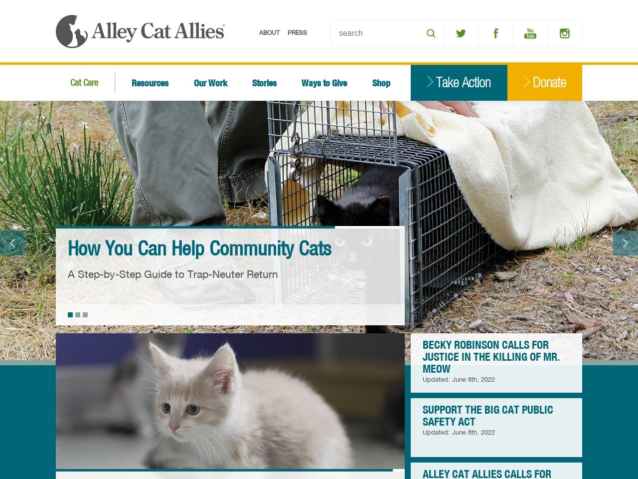 alleycat.org